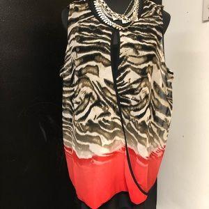 Picadilly Fashion